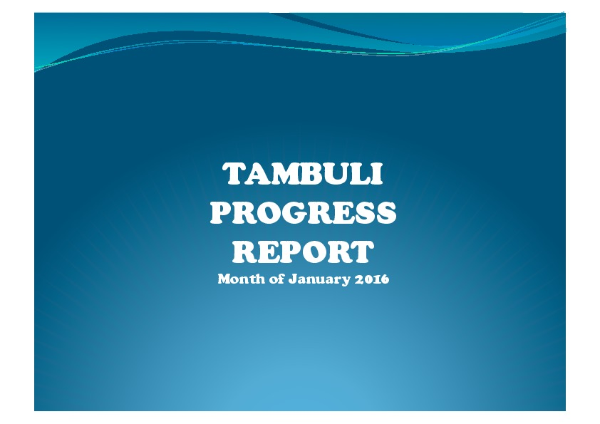 Tambuli 20160107 Progress Report-thumbnail